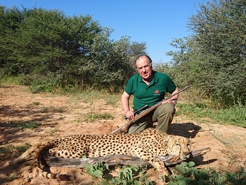 NAMIBIA CHEETA