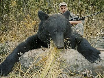 Rusia SIBERIA BLACK GRIZZLY
